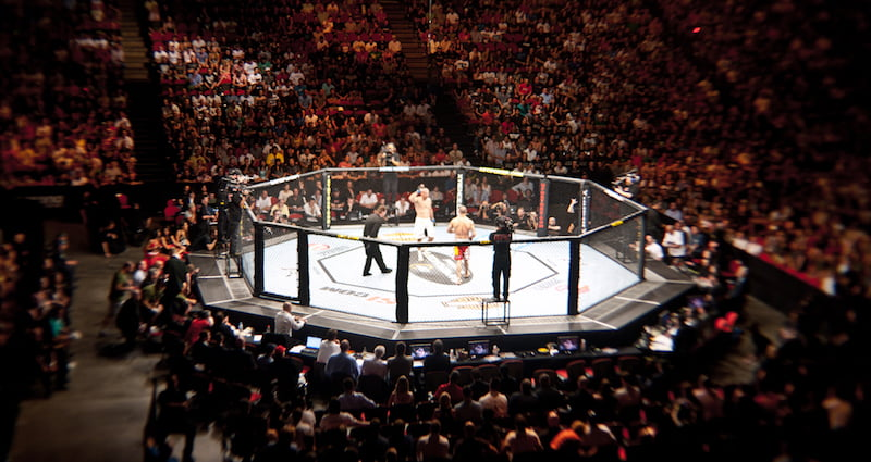 IMG Teams With Private Equity Firms for $4B UFC Purchase